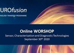 "Online workshop on ""Sensors, Characterization and Diagnostic Technologies"""